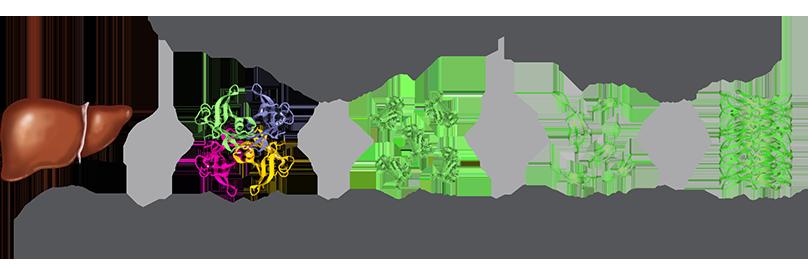 遺伝性ATTRアミロイドーシス(FAP)        発症機序       You are now leaving hattramyloidosis.co.uk              このサイトの情報は日本国内の医療関係者を対象とするもので、一般の方および国外の医療関係者に対する情報提供を目的としたものではありません。あなたは日本国内の医療関係者ですか?            Sign up to receive updates about hereditary ATTR amyloidosis from AlnylamThank youあなたは今出発しています hATTR amyloidosis.com